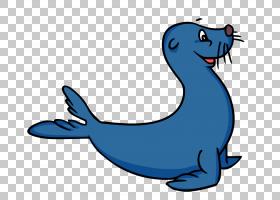 内容Pinniped,Snow Seal的PNG剪贴画蓝色,海洋哺乳动物,哺乳动物,