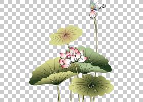 中国画艺术,手绘莲花PNG剪贴画水彩画,墨水,插花,画,植物茎,手绘,