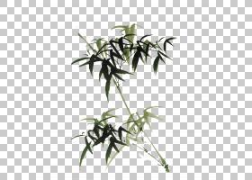 Bamboo免费电脑文件,绿色中国风竹子装饰图案PNG剪贴画叶,中国风