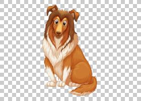 狗种,狗PNG剪贴画哺乳动物,动物,食肉动物,摄影,宠物,狗像哺乳动