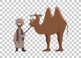 独峰驼卡通版税,Led骆驼男子PNG剪贴画哺乳动物,动物,摄影,业务人