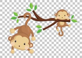 猴子欧几里德皇族,卡通猴子播放材料PNG剪贴画卡通人物,哺乳动物,