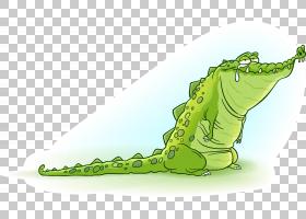 鳄鱼眼泪短吻鳄,鳄鱼PNG剪贴画动物,摄影,户外鞋,生日快乐矢量图