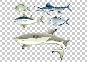 窗口水生动物墙壁挂毯窗帘,卡通鱼PNG剪贴画卡通人物,海洋哺乳动