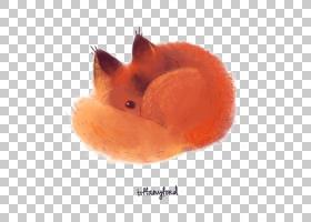 红狐狸猫绘图,狐狸PNG剪贴画水彩画,英语,画,动物,食肉动物,手,橙