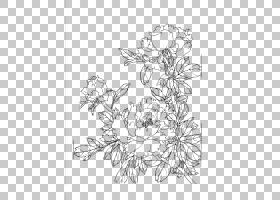 绘图,牡丹花线画PNG剪贴画插花,白色,中国风格,单色,对称,抽象线