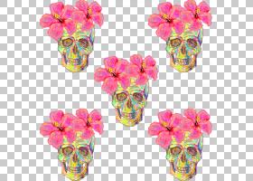 花Euclidean Shutterstock模式,花头骨PNG剪贴画生日快乐矢量图像
