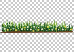 花卡通,素描花平PNG剪贴画草,颜色,封装PostScript,鲜花,开花植物