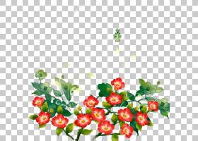 花艺设计师,红色小号PNG剪贴画插花,画,食物,叶,手,分支,草,卡通,