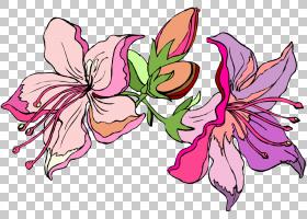 花艺设计百合,百合PNG剪贴画插花,花卉,虚构人物,卡通,百合,封装