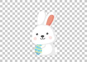 复活节兔子兔子Leporids,卡通兔子PNG剪贴画卡通人物,哺乳动物,动