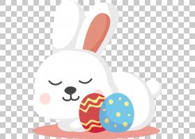 复活节兔子白兔复活节彩蛋,复活节白兔PNG剪贴画设计哺乳动物,食
