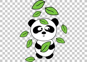 大熊猫熊欧几里德,熊猫PNG剪贴画食品,动物,叶,carnivoran,生日快