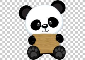 大熊猫熊绘图小熊猫宝贝熊猫,熊猫PNG剪贴画动物,carnivoran,赤壁