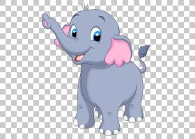 大象,小象,灰色大象PNG剪贴画哺乳动物,食肉动物,演示文稿,狗像哺