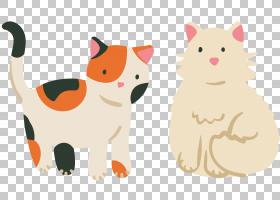 布娃娃阿比西尼亚品种绘图,小猫PNG剪贴画哺乳动物,猫像哺乳动物,