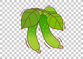 果汁黄瓜蔬菜,黄瓜PNG剪贴画食品,画,叶,手,甜瓜,卡通,原料,虚构
