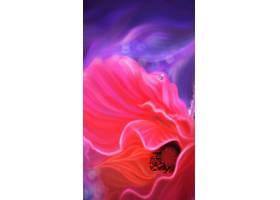 H5粉丝花卉背景图片