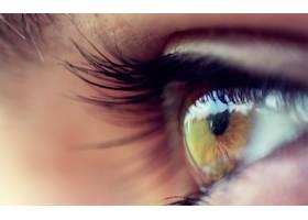 女人,眼睛,壁纸,(2)
