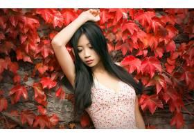 女人,亚洲的,女孩,妇女,模特,情绪,叶子,黑色,头发,壁纸,