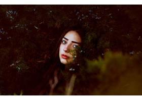 女人,艺术的,女孩,脸,树,冷杉,树,凝视,壁纸,图片