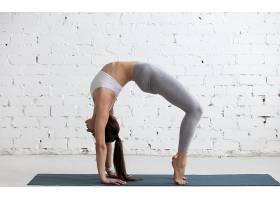 女人,瑜珈,妇女,女孩,黑发女人,马尾辫,壁纸,(1)