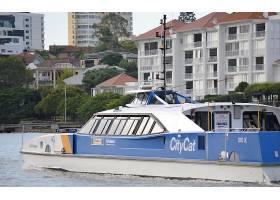 车辆,渡船,小船,海,水,城市,建筑物,布里斯班,乘客,船,壁纸,图片