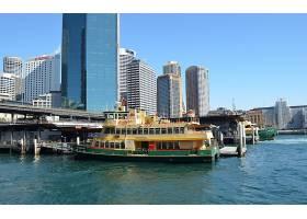 车辆,渡船,悉尼,澳大利亚,海港,小船,车辆,码头,建筑物,城市,圆形图片