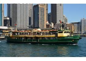 车辆,渡船,悉尼,澳大利亚,海港,小船,车辆,码头,建筑物,城市,女士图片
