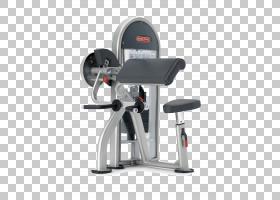 二头肌卷曲星际Trac说谎肱三头肌扩展力量训练下拉运动,健身房健