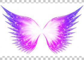 布法罗翼,抽象蝴蝶发光效果PNG剪贴画紫色,白色,紫罗兰色,海报,昆