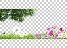 绿色,绿色春天材料PNG剪贴画免费标志设计模板,叶,分支,计算机壁