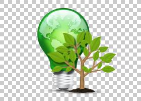 白炽灯泡照明LED灯荧光灯,绿色节能s PNG剪贴画节能,免费标志设计