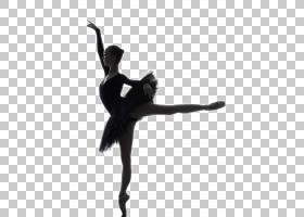 芭蕾舞者剪影股票摄影,芭蕾美女模特PNG剪贴画摄影,免版税,表演艺图片