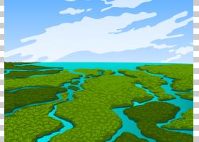 大沼泽地潘塔纳尔湿地生态学,湿地的PNG剪贴画风景,电脑壁纸,草,