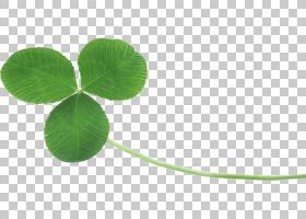 三叶草四叶草,三叶草PNG剪贴画草本植物,叶,草,棒棒糖,桌面壁纸,
