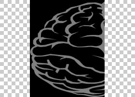 人脑绘图,脑PNG剪贴画叶,人,版税,桌面壁纸,人体,单色摄影,器官,