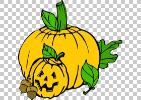 万圣节,南瓜PNG剪贴画灯笼,食品,叶,花,水果,蔬菜,南瓜,冬季壁球,