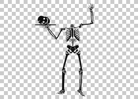 万圣节人类骨骼,阿凡达剪辑PNG剪贴画手,单色,单色摄影,有机体,pi