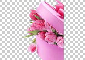 国际妇女节幸福3月8日女人桌面,郁金香PNG剪贴画插花,愿望,蛋糕装
