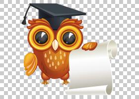 文凭毕业典礼,猫头鹰与文凭,猫头鹰举行滚动和戴毕业帽子PNG剪贴