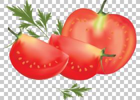 李子番茄罗马番茄,番茄PNG剪贴画天然食品,食品,番茄,茄属植物家
