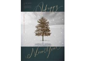 高档韩式新年快乐主题海报设计