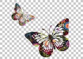 蝴蝶绘画绘画,蝴蝶,两个五彩花卉蝴蝶PNG剪贴画刷脚蝴蝶,剪贴画,