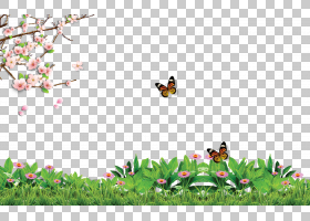 海报,春天海报背景影响,在绿色植物PNG clipart的蝴蝶效果,叶,广