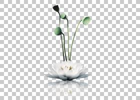 禅宗海报中国风山水佛教冥想,莲花PNG剪贴画水彩画,插花,白色,电
