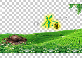 茶园,茉莉花茶海报素材PNG剪贴画叶,广告海报,海报,茶,电脑壁纸,