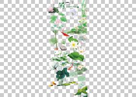 Nelumbo nucifera,手绘莲花消光材料中国风,白花和绿色lilypad PN