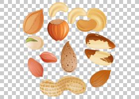 Nucule树坚果过敏,坚果Clipar,被分类的坚果例证PNG clipart食品,