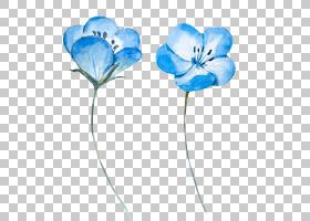 水彩画蓝色花,浅蓝色水彩花,两个蓝色花瓣PNG剪贴画蓝色,水彩叶子